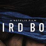 Bird Box Challenge: non fatevi male per un meme